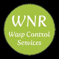 key West Wasp Control